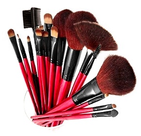 Professional 13-Piece Cosmetic Brush Set with Pouch
